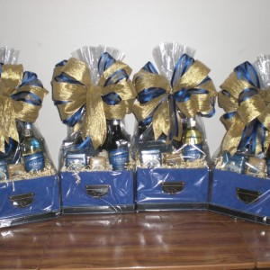A Special Corp Client - Rocky Mountaineer - wrapped versions