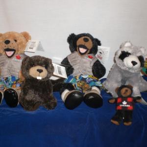 Canada Sports Bears